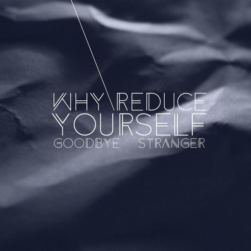 goodbye-stranger-Why-Reduce-Yourself1