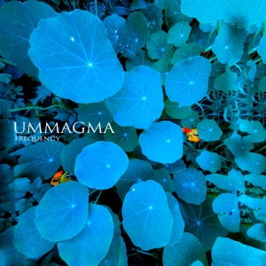 Ummagma - Frequency (cover)
