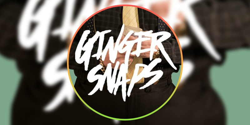 Ginger Snaps channels Beck in hit new single Number Crunching